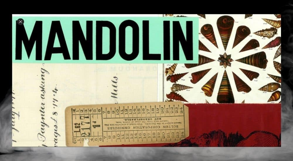 Mandolin - Best Plugins for Garageband
